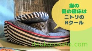 猫の夏の寝床はニトリのNクール