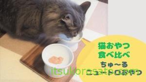 【ネコおやつ比べ】ニュートロおやつ・CIAOちゅ~る どっちがお好き?