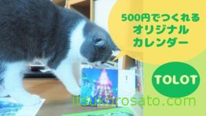 にゃんこ選抜! 「TOLOT」で猫のオリジナル卓上カレンダーづくり