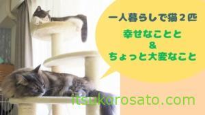 一人暮らしの猫2匹飼い 幸せなこととちょっと困ったこと