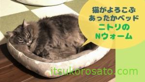お気に入りペットベッド現る!猫が喜ぶニトリのNウォーム
