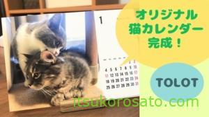 オリジナル猫カレンダー完成です!【TOLOT卓上カレンダー】