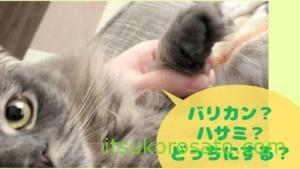 長毛猫の肉球の毛のカット、どうしてますか? バリカン?ハサミ?