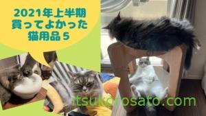 猫も飼い主も生活向上!買ってよかったおすすめ猫用品5|2021年上半期